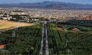 باربری تهران به کرمان